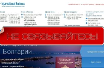 International Business - честный обзор компании international.expert